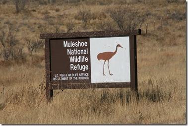 The Oldest Wildlife Refuge in Texas