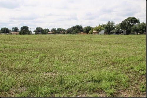 West Texas Weeds